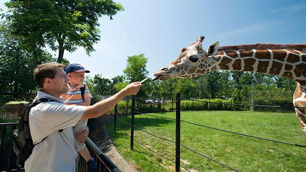 Buffalo Zoo - Photo by NYS ESD
