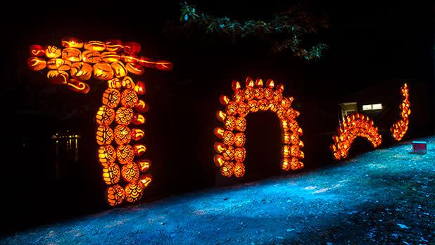 Pumpking display at Great Jack O'Lantern Blaze
