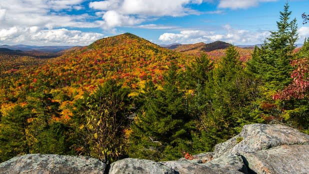 View of fall foliage from Castle Rock, Adirondacks