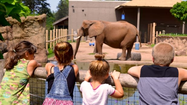 Kids Watching Elephant at Seneca Park Zoo in NY