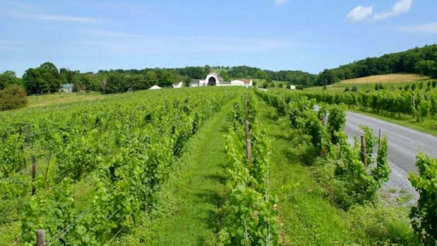 Millbrook Vineyards and Winery