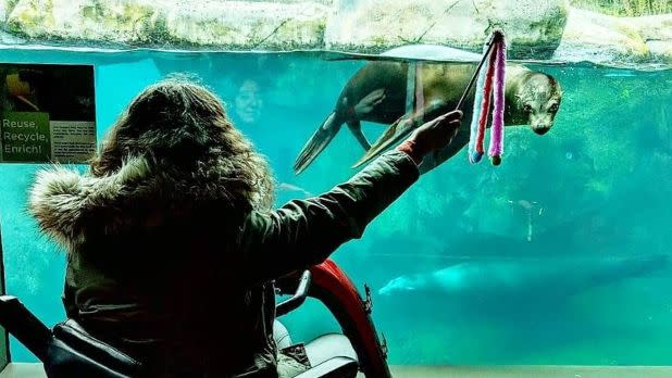 Woman holding a toy out for sea lion at the Seneca Park Zoo in Rochester, New York