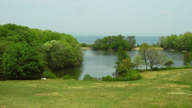 Green trees in front of a lake at Caumsett State Park, Lloyd Harbor, New York