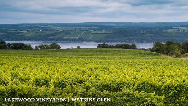 A photo of the view of Lakewood Vineyards along the Seneca Lake Byway