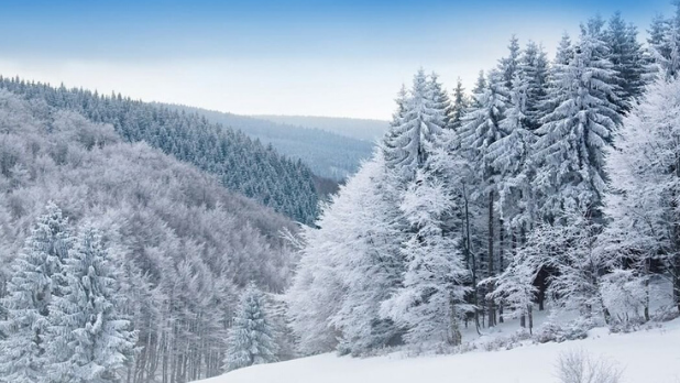 A picture of Windham Mountain in the winter with snow covered trees