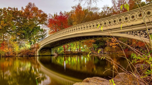 A picture of Bow Bridge in Central Park during the fall season