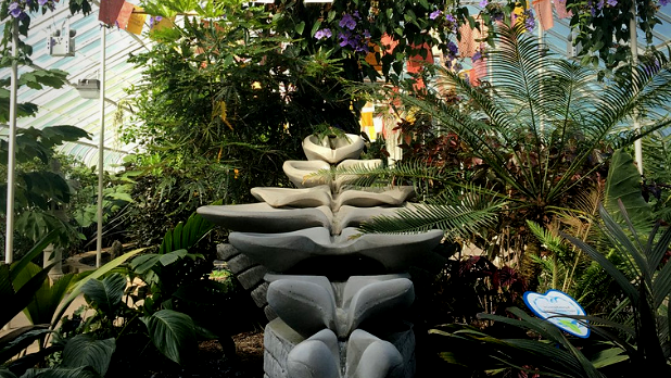 A photo of plants at the Buffalo and Erie County Botanical Gardens