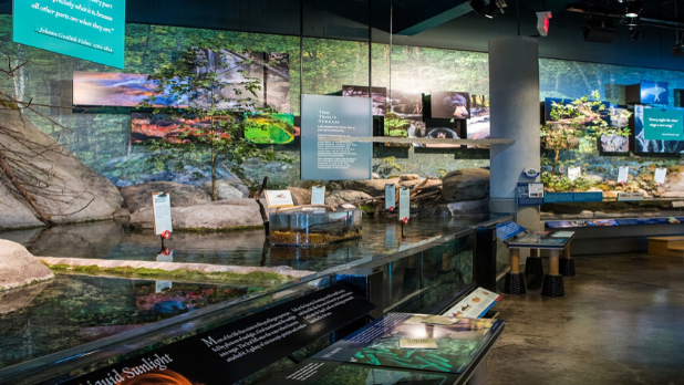 A photo of inside the Wild Center