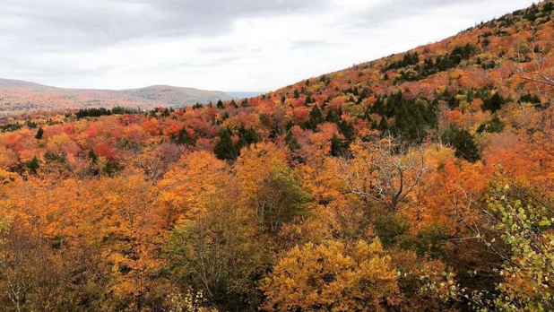 The Catskill Mountains in the fall season with fall foliage