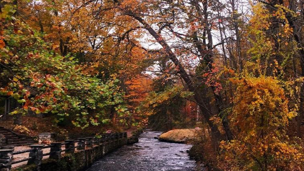 The view of a trail and stream at Saratoga State Park during the fall season