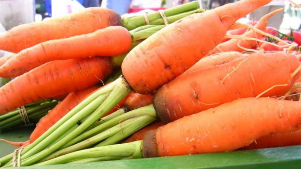 A basket of carrots at the Hudson Farmer's Market