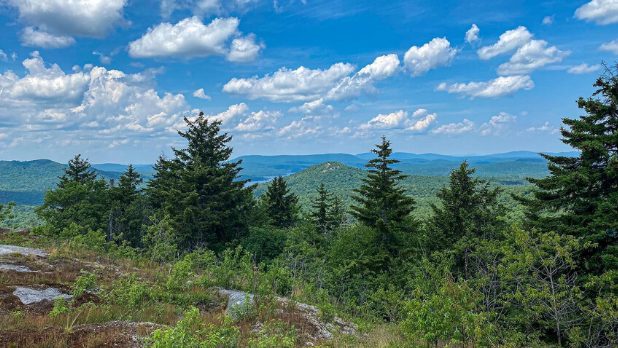 A view of pine trees, mountains, and a clear sky on top of the Tupper Lake Triad