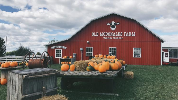 The exterior of Old McDonald's Farm with pumpkins on a table in the front of the barn