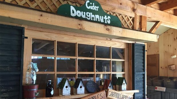 Woodside Orchards cider doughnut display