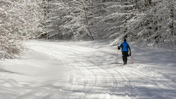 Cross Country Skiing at Allegany State Park