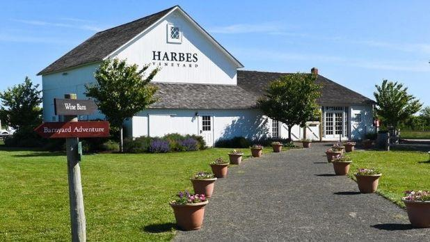 Harbes Family Farm in Mattituck