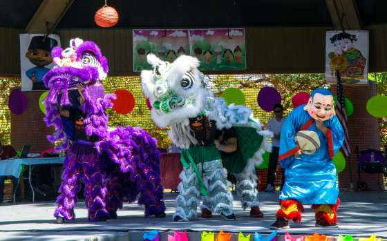 Asian Pacific American Society Festival