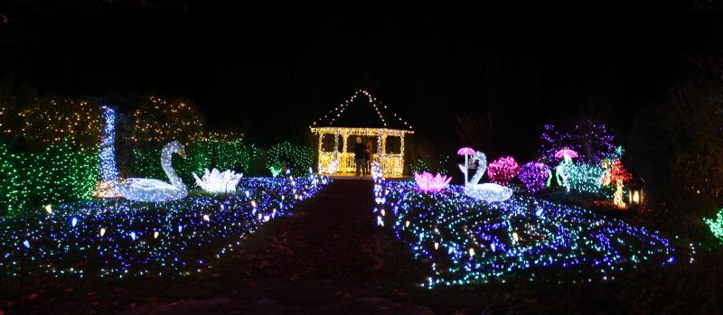 Holiday Lights at The Village Green by Hayley Radich