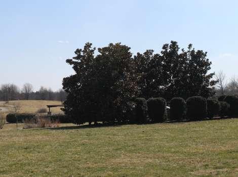 The Arboretum State Botanical Garden Of Kentucky