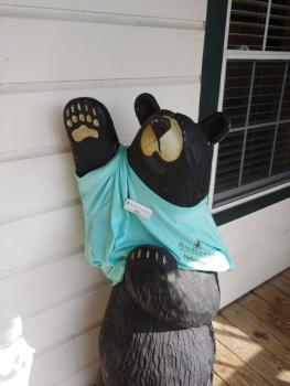 Visitor Center bear