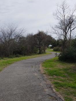 Blue Goose Trail on Sabine National Wildlife Refuge