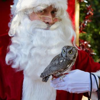 Santa with Owl at OC Zoo Christmas