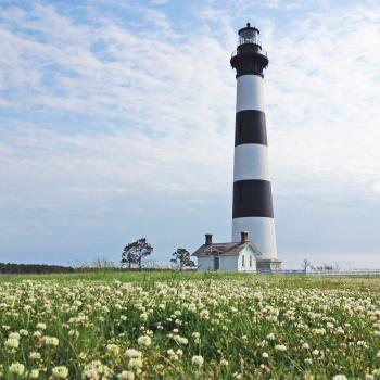Field of flowers in front of Bodie Lighthouse
