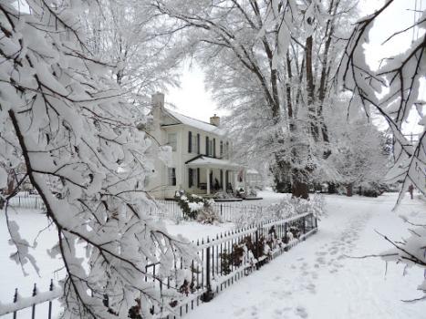 Winter Bryan