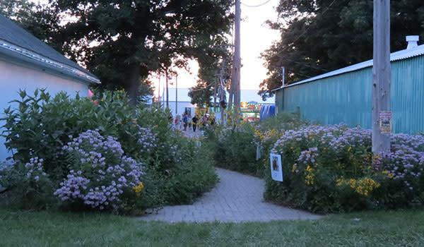 Jeanette Jaskula Nature Walks at Newton County Fair
