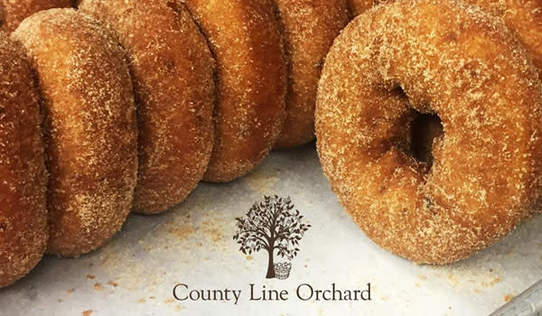 County Line Orchard doughnuts