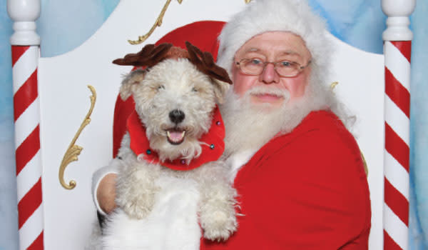 Santa Pet Photos