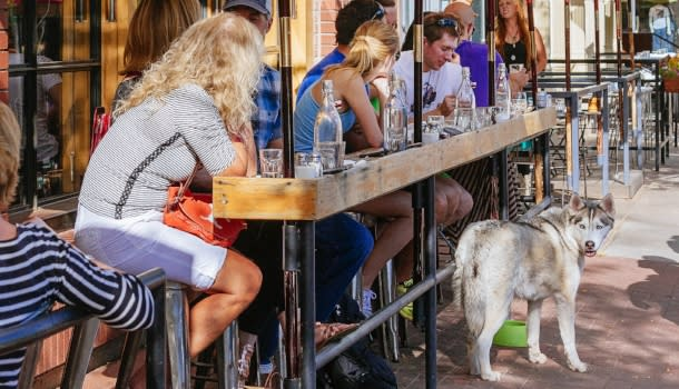Patrons and dog at Tahona Patio Boulder