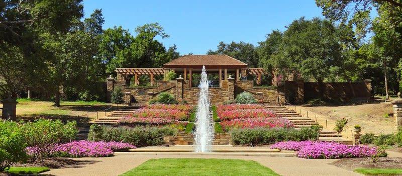 Rose Garden - Blog