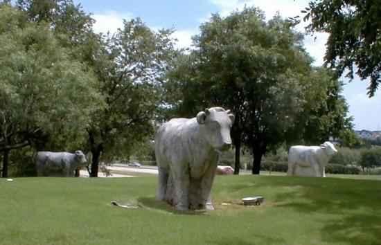 Sculpted by Harold Clayton, the Marble Cows Sculpture is a tribute to the area's cattle-ranching history.