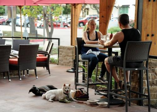 Bring the pups along on your next trip to the pet friendly patio at  Lazy Dog Cafe.