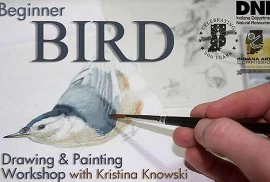 Beginner Bird Drawing & Painting Workshop