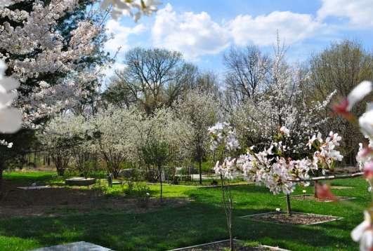 Gabis Arboretum at Purdue Northwest