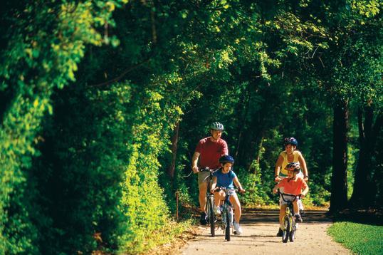 Family Biking on Path