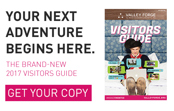 Visitors Guide Ad 2017