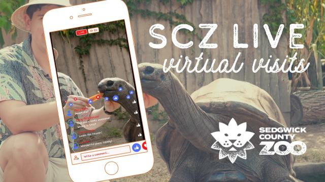 Sedgwick County Zoo virtual visits