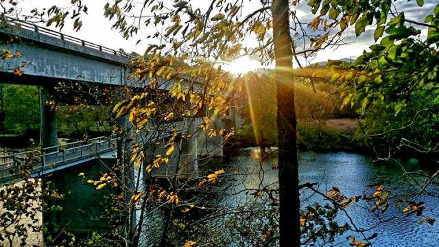 Fall Water Bridge - Fall Photo