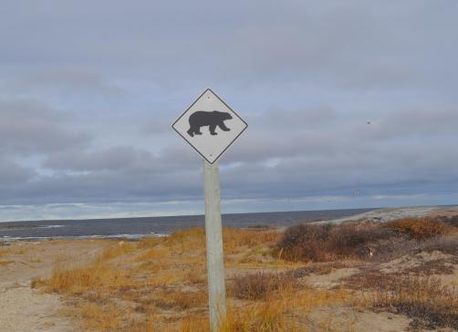 polar bear sign in Churchill, Manitoba