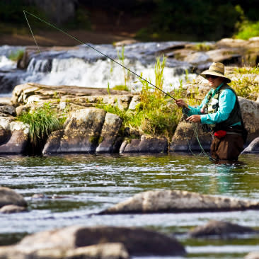 Fly Fishing, West Branch of Ausable River