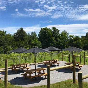 Benches outside The Vineyard at Windham