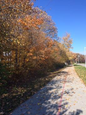 Great views of late Fall foliage on the YMCA trails!