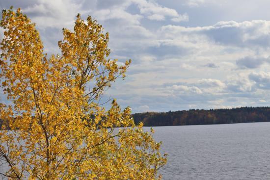 Lake Wissota