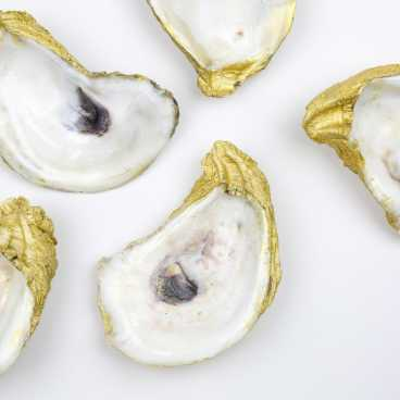 I Do Krewe Gilded Oysters