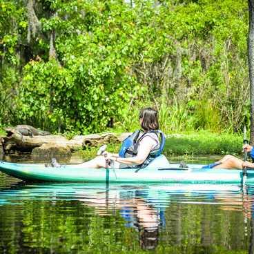 A Kayak Swamp Tour