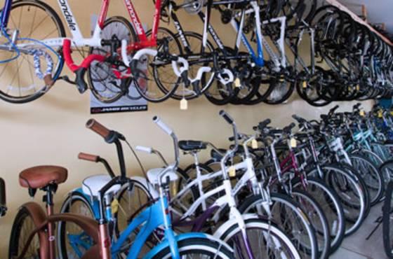 0109467-bicycle-doctor-.jpg
