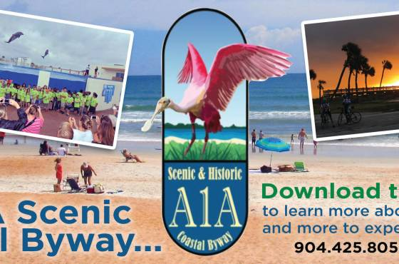 Explore the A1A Scenic Byway
